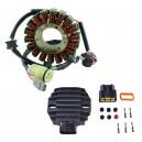 Kit Allumage Stator Régulateur Rectifieur Yamaha 250 Raptor OEM 4D3-81410-00-00 5GT-81960-00-00