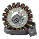 Stator CanAm DS250 OEM S31120RCA000