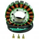 Stator Yamaha AR210 SR210 SX210 FX1000 FX1100 VX1100 GP1300R OEM 60E-81410-00-00 60E-81410-01-00