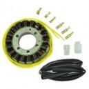 Stator Allumage Kawasaki ZZR600 ZX600 ZX6 ZL600 Eliminator ZX600 Ninja OEM 32101-19B10 32101-19B30 32101-45C00 32101-48E00