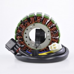 Stator Allumage Kawasaki KLX400 OEM 21003-S007