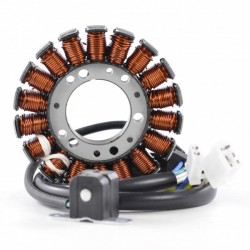 Stator Allumage Yamaha TTR 250 OEM 4GY-81410-01-00 4GY-81410-02-00