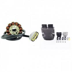 Kit Allumage Stator Régulateur Yamaha FZS1000 FZ1 FZ8 YZF R1 OEM 2D1-81410-00-00 2D1-81410-01-00 2D1-81410-10-00 5VY-81410-00-00