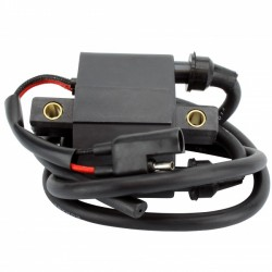 Ignition Coil Arctic Cat Cheetah Cougar Jag Pantera Panther Prowler Mountain Cat ZL 440 OEM 3003-575 3005-386 3005-341