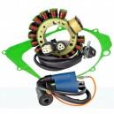 Kit Stator Ignition Coil Cover Gasket Yamaha YFM 350 Big Bear 400 Kodiak OEM 3HN-85510-10-00 4GB-85510-00-00 5KM-82310-00-00