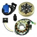 Kit Stator 200 Watts Rotor Bobine Régulateur Yamaha 350 Banshee OEM 2GU-85510-50-00 2GU-85550-50-00