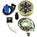 Kit Stator 200 W Rotor Régulateur Bobine Yamaha 350 Banshee OEM 3GG-85510-00-00 3GG-85510-01-00 2GU-85550-50-00 3GG-85550-00-00