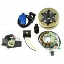 Kit Stator 200 Watts Rotor Boitier CDI Bobine Régulateur Yamaha 350 Banshee OEM 3GG-85550-00-00 3GG-85540-10-00 3GG-85510-00-00