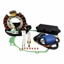 Kit Ignition Stator CDI Stator Cover Gasket Ignition Coil Yamaha 350 Warrior OEM 3HN-85510-10-00 4GB-85510-00-00 3GD-85540-40-00