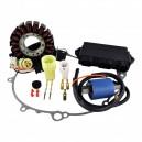 Kit Stator Ignition Coil CDI Cover Gasket Yamaha 660 Raptor OEM 5LP-85540-00-00 5LP-85540-10-00 1P0-H1410-00-00 4XE-81410-00-00